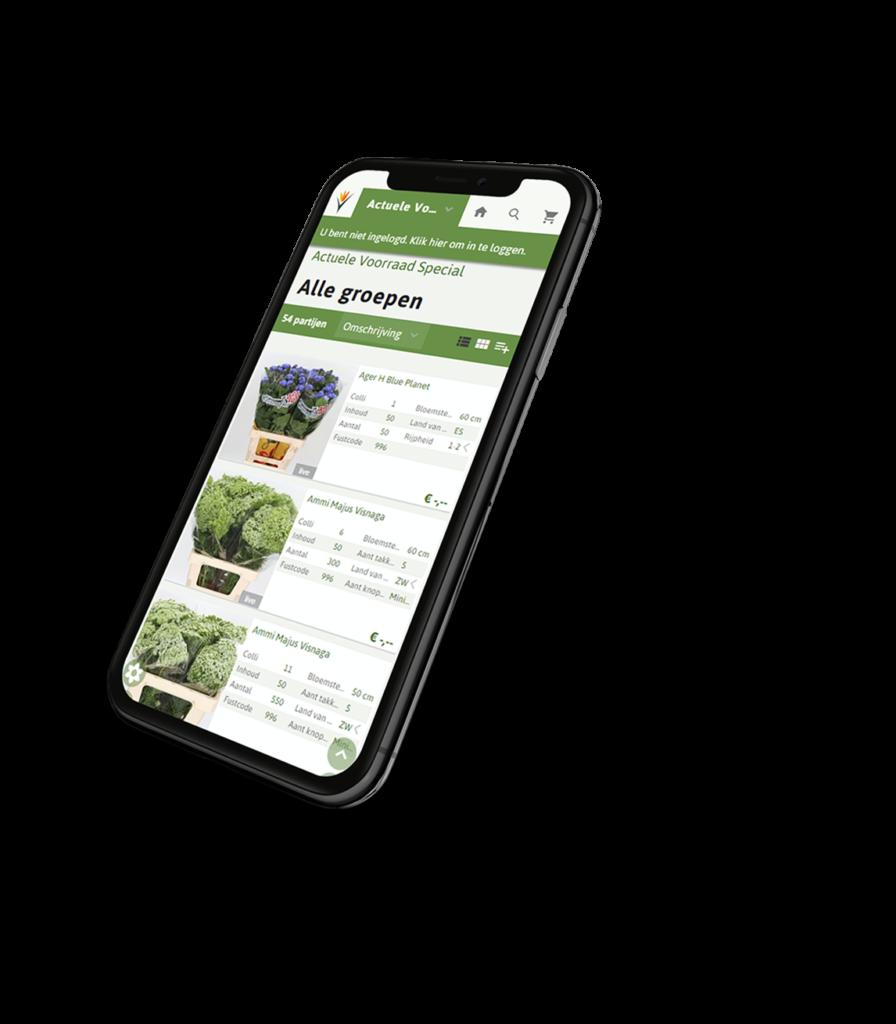 Rotoflowers App
